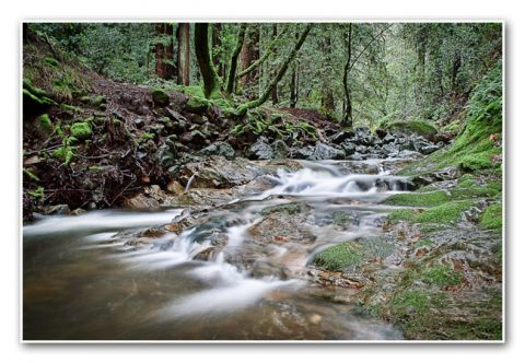 Sonoma Creek Keith C. Flood Photography Landscape Sugarloaf Sate Park