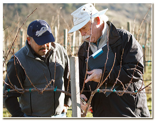 Vineyard managers rosati family winery